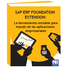 SAP ERP Foundation