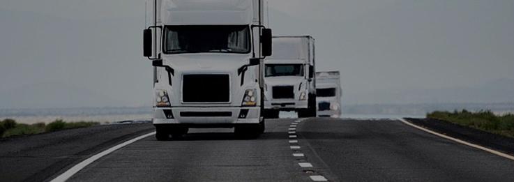 NB Logistics Management