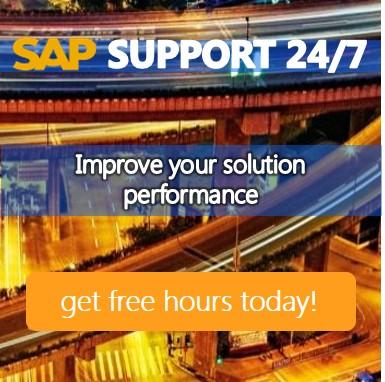 SAP Support 24/7